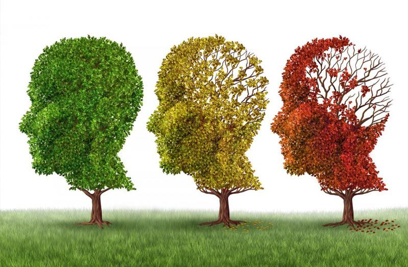 Alzheimer en ancianos   Maid In Barcelona